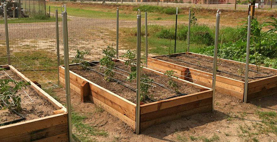 Attrayant Raised Garden Beds